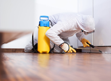 fumigation and pest control full list of services from Termapest